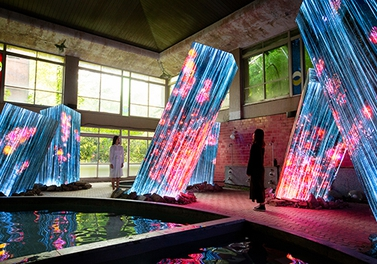 "Grand Seiko meets teamLab in - ""teamLab: A Forest Where Gods Live, Ruins and Heritage - THE NATURE OF TIME""."